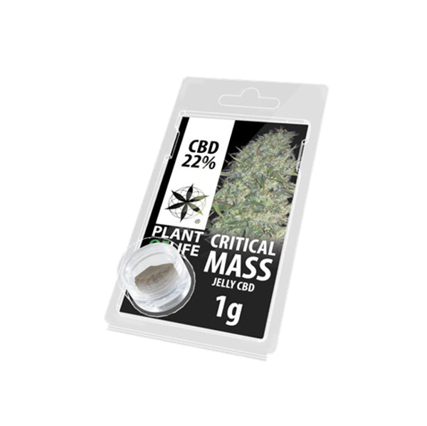 Picture of Plant of Life Critical Mass Jelly 1g 22% CBD