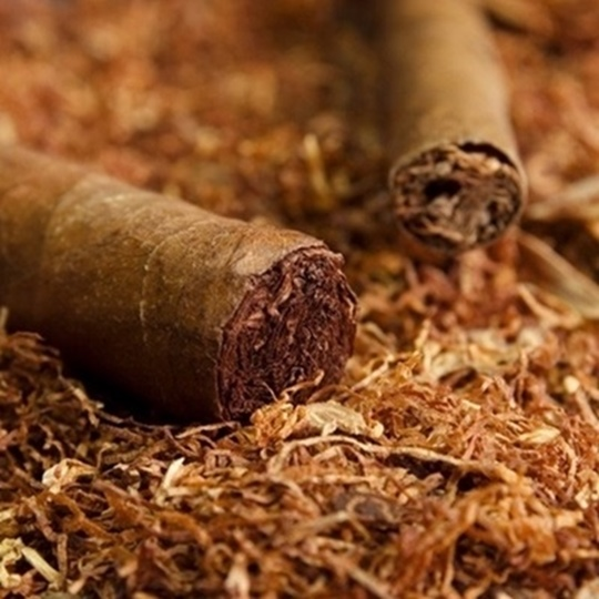 Picture of TPA Cubano Type 10ml